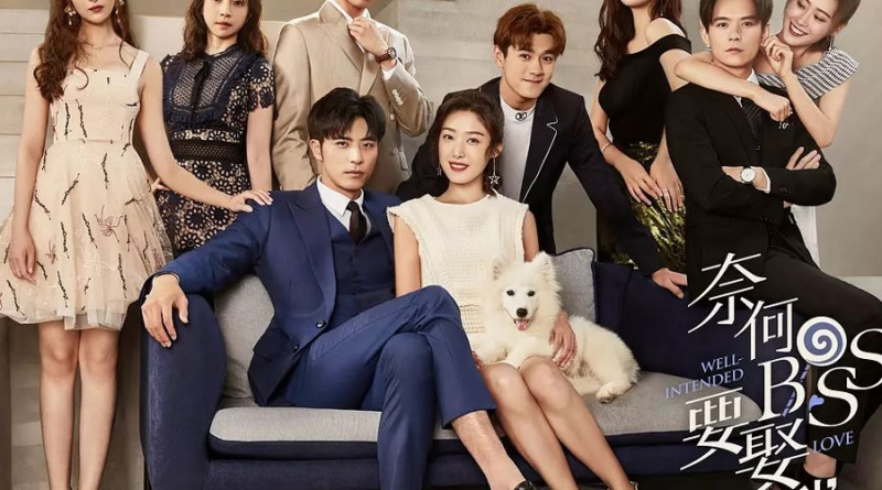 Well Intended Love Chinese Drama Recap: Episodes 5-6